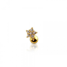 Piercing Orecchio Cartilagine - Helix - Conch - Tragus - Barbell Piercing – Nausicaa Gold Plated